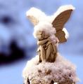 ★ Christmas Angels ☆  - christmas photo