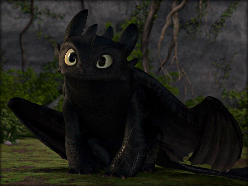 How to Train Your Dragon images ☆ Toothless ☆ HD wallpaper and background photos