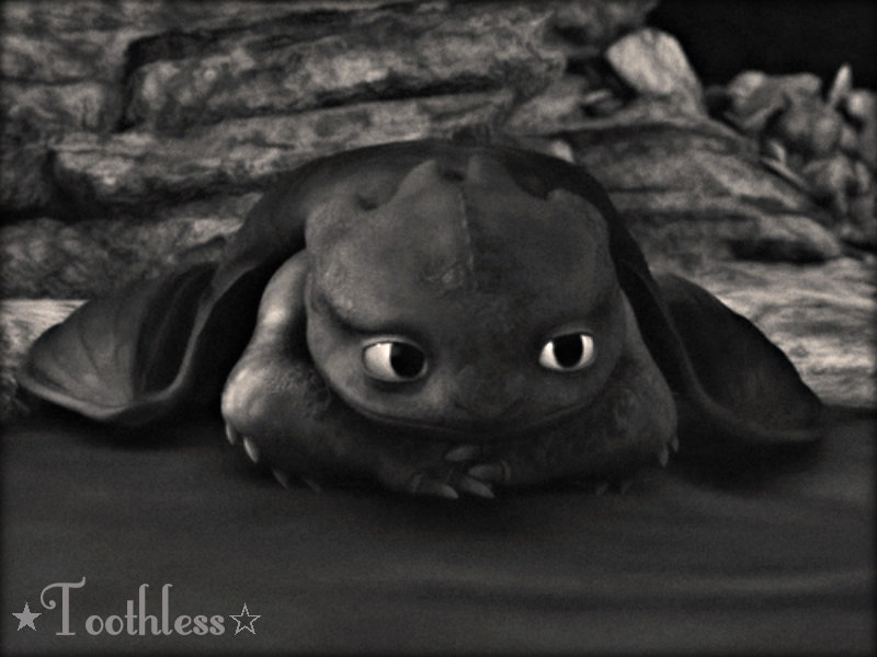 Toothless the Dragon images ☆ Toothless ☆ HD wallpaper and background photos