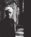  - draco-malfoy photo