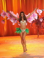 2012 VSFS Segment 6: malaikat in Bloom