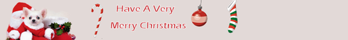 All Small chiens Christmas Banner x