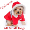 All Small Dogs Christmas Icon x