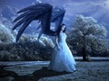 Angel wallpaper - cynthia-selahblue-cynti19 wallpaper