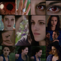 BD 2 pic collage