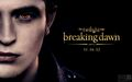 BD 2 wallpapers - breaking-dawn-part-2 wallpaper
