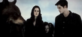 BD part 2 - breaking-dawn-the-movie photo