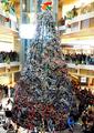 Bikes on Christmas Tree - christmas photo