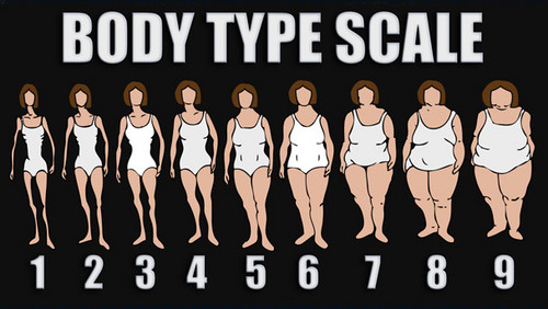 Battle of the Sexes वॉलपेपर possibly with a sign entitled Body type scale, which one is yours?