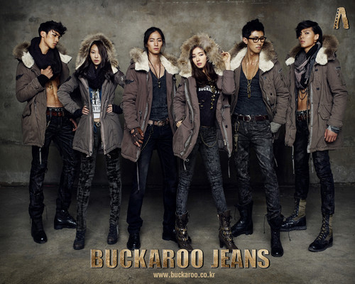 Shin Se Kyung wallpaper probably containing a well dressed person, bellbottom trousers, and long trousers called Buckaroo Jeans