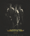 Catching Fire - finnick-odair photo