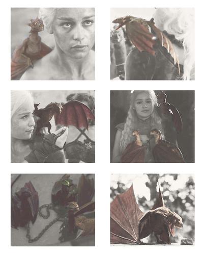 Daenerys + dragons