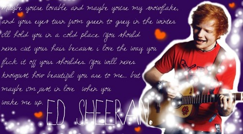 Ed Sheeran wallpaper probably with a concert and a guitarist titled Ed Sheeran x