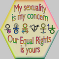 Equal Rights - gay-rights photo
