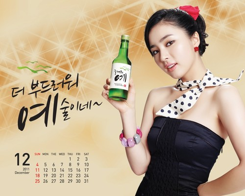 Shin Se Kyung wallpaper titled Fun Yeah Soju