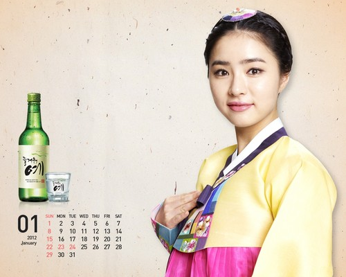 Shin Se Kyung wallpaper probably containing a portrait entitled Fun Yeah Soju