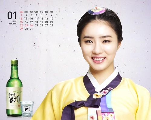 Shin Se Kyung wallpaper possibly containing a kimono entitled Fun Yeah Soju