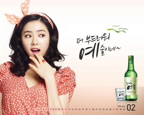 Shin Se Kyung wallpaper possibly containing a portrait titled Fun Yeah Soju