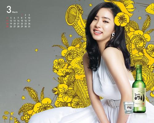 Shin Se Kyung wallpaper containing a spurge entitled Fun Yeah Soju