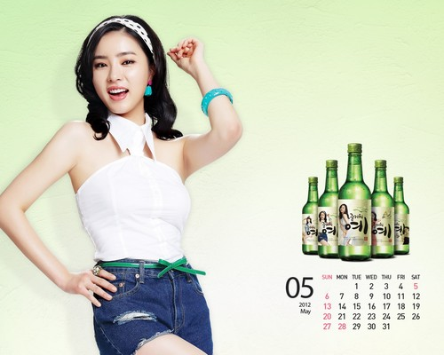 Shin Se Kyung wallpaper entitled Fun Yeah Soju