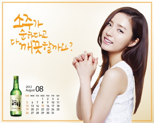 Shin Se Kyung wallpaper with a portrait called Fun Yeah Soju