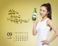 shin-se-kyung - Fun Yeah Soju wallpaper