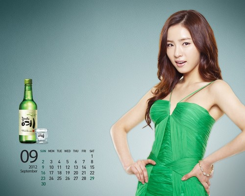 Shin Se Kyung achtergrond possibly containing a avondeten, diner dress entitled Fun Yeah Soju