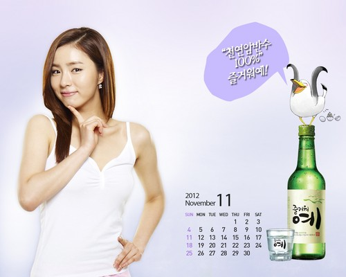 Shin Se Kyung wallpaper containing a portrait entitled Fun Yeah Soju