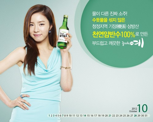 Shin Se Kyung wallpaper probably containing a portrait called Fun Yeah Soju