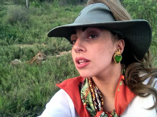 Gaga Safari Pictures