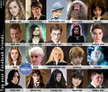 HP Characters - harry-potter photo