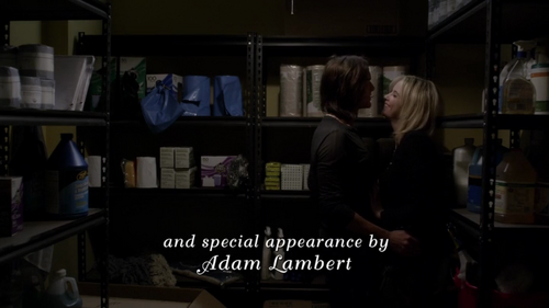 Hanna & Caleb wallpaper possibly with a bookshop, a reading room, and an athenaeum entitled Haleb