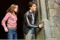 Harry & Hermione - harry-ron-and-hermione photo