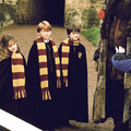Harry, Ron and Hermione - harry-ron-and-hermione photo