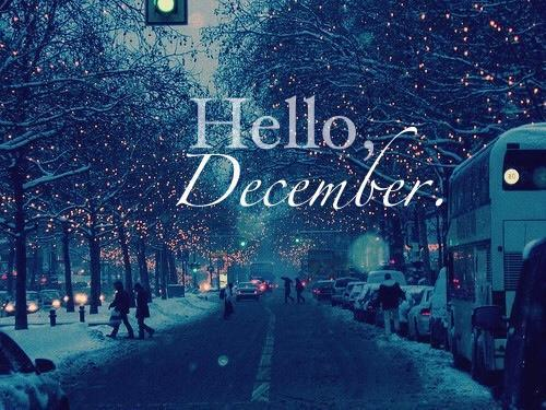 Cynthia Selahblue Cynti19 Images Hello December 3 Wallpaper And Background Photos