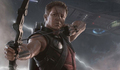 Jeremy Renner as Hawkeye in The Avengers - jeremy-renner photo