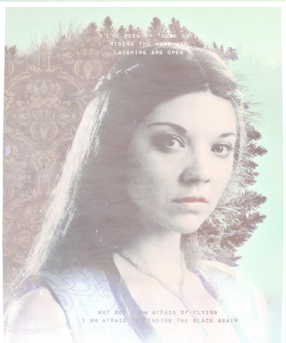 Margaery Tyrell wallpaper possibly containing a portrait entitled Margaery Tyrell
