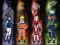 Naruto Shippuuden - naruto-shippuuden wallpaper