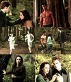 New Moon - new-moon-movie photo