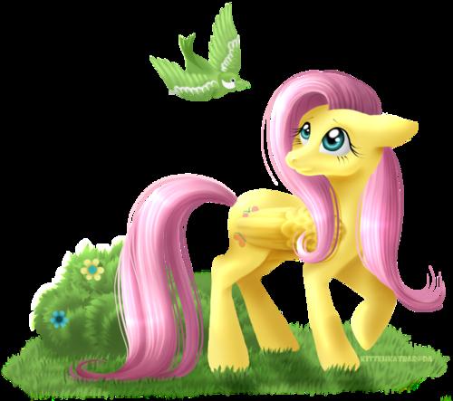 Pony Pony Pony Pony