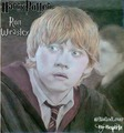 Rupert Grint-Ron Weasley-Harry Potter - romione fan art