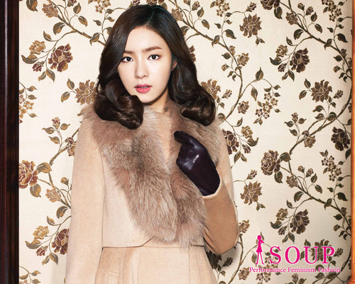 Shin Se Kyung wallpaper containing a fur coat titled SOUP