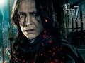 severus-snape - Severus Snape Wallpaper wallpaper