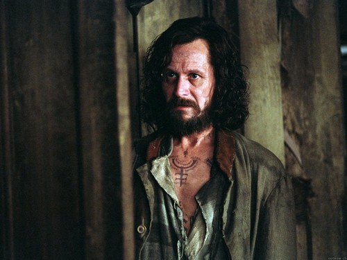 Sirius Black wallpaper probably containing a business suit called Sirius Black Wallpaper