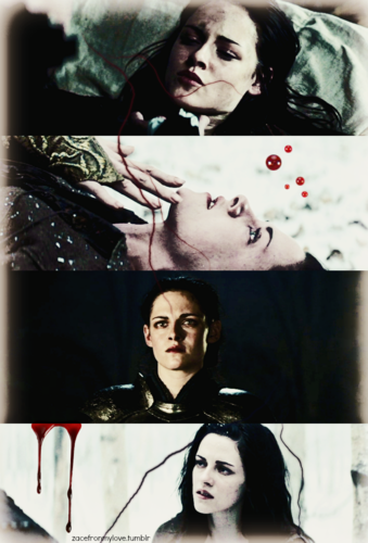 Snow White and The Huntsman wallpaper possibly with anime entitled Snow White and The Huntsman