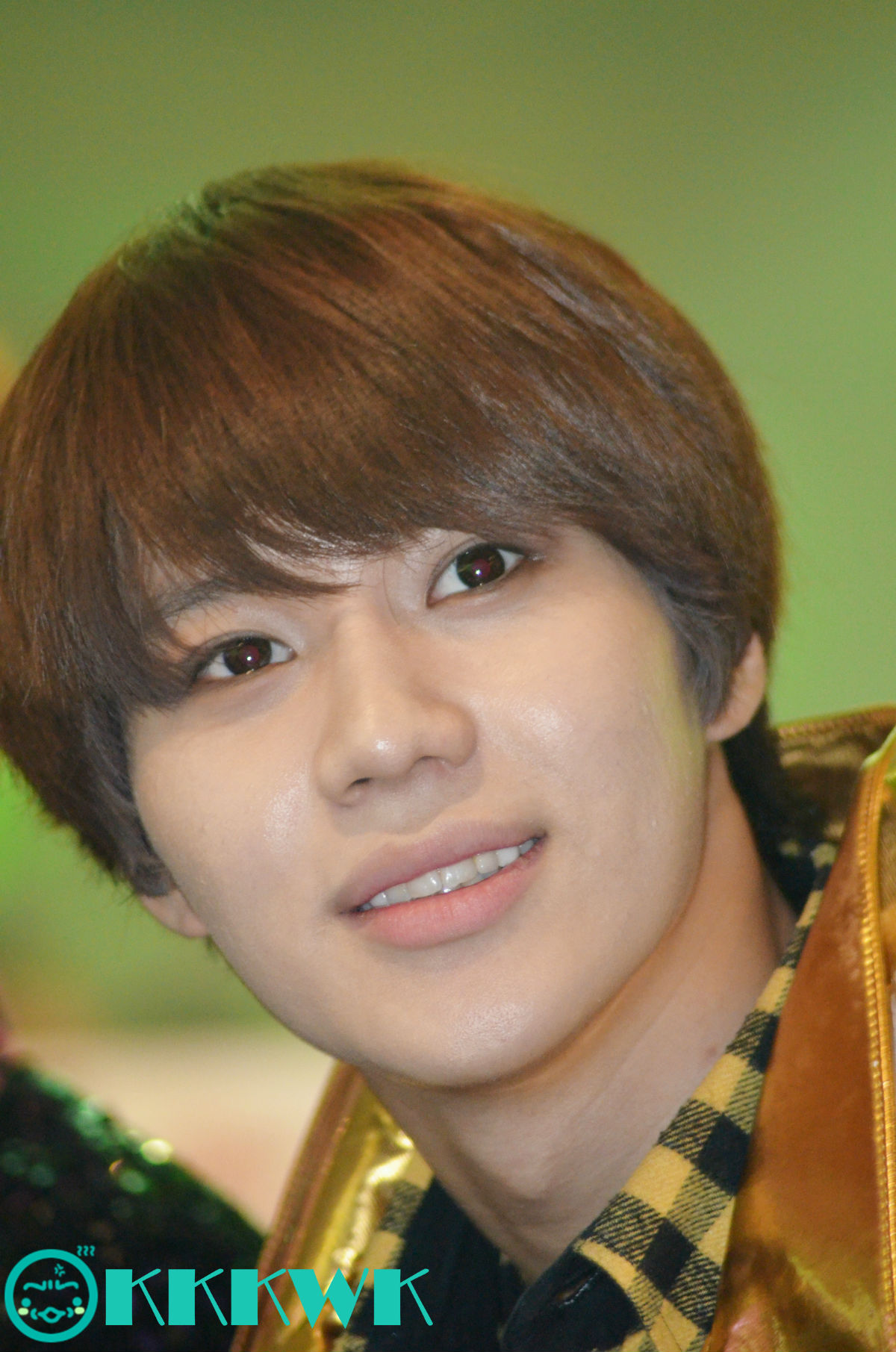 taemin and sulli confirmed dating