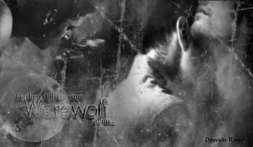 I'm Your Werewolf