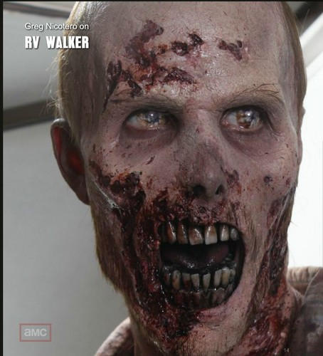 Zombies wallpaper entitled Zonbies On Walking Dead
