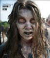 Zonbies On Walking Dead