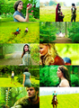color meme | once upon a time → green